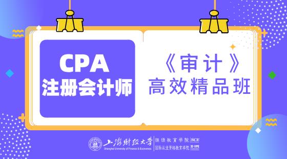 上海財經大學CPA《審計》高效精品班